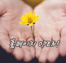 open2-263_250